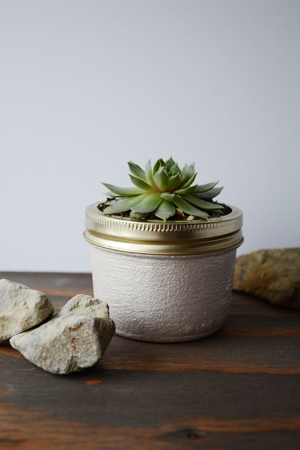 Creative decorating with Succulents | Storypiece.net
