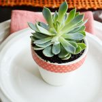 How to Make Succulent Table Decor Your Guests Will Love