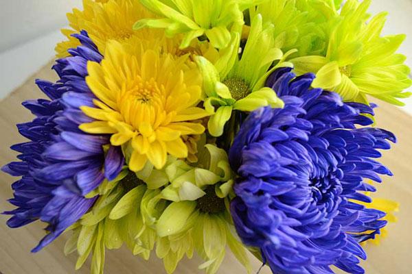 Spring Flower Bouquet | Storypiece.net