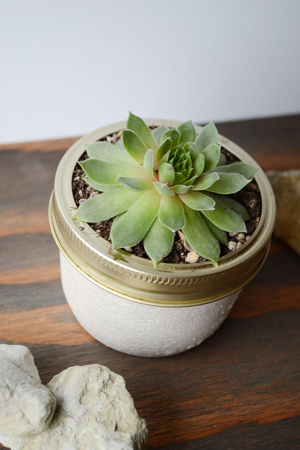 Customize a pot with metallic paint | Storypiece.net