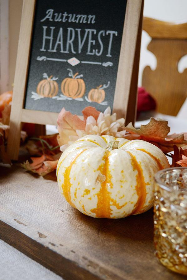 Pumpkin Decorations | Storypiece.net