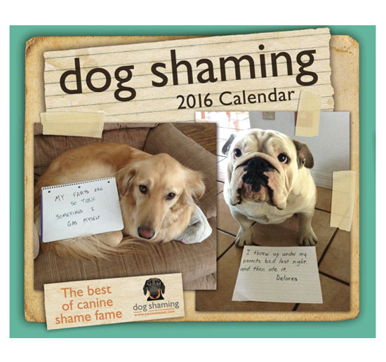 Dog Shaming Calendar | Storypiece.net