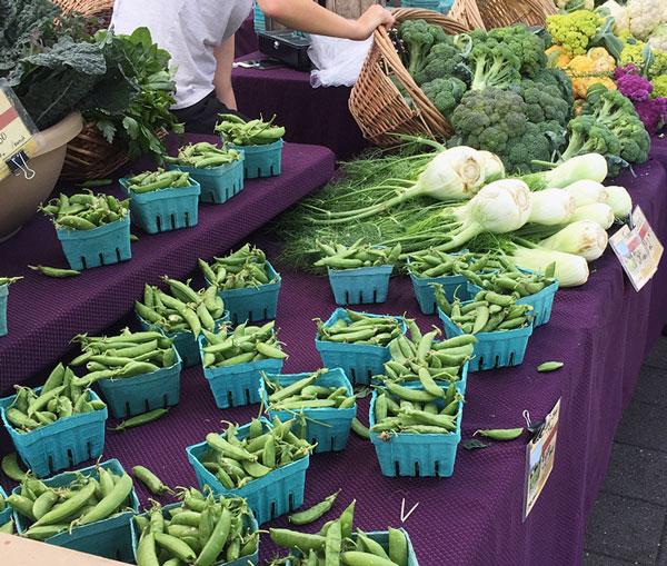 Farmers Market Produce | Storypiece.net