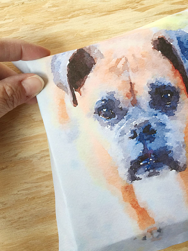 Boxer Watercolor Art | Storypiece.net