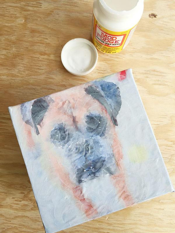 Watercolor Pet Portrait | Storypiece.net