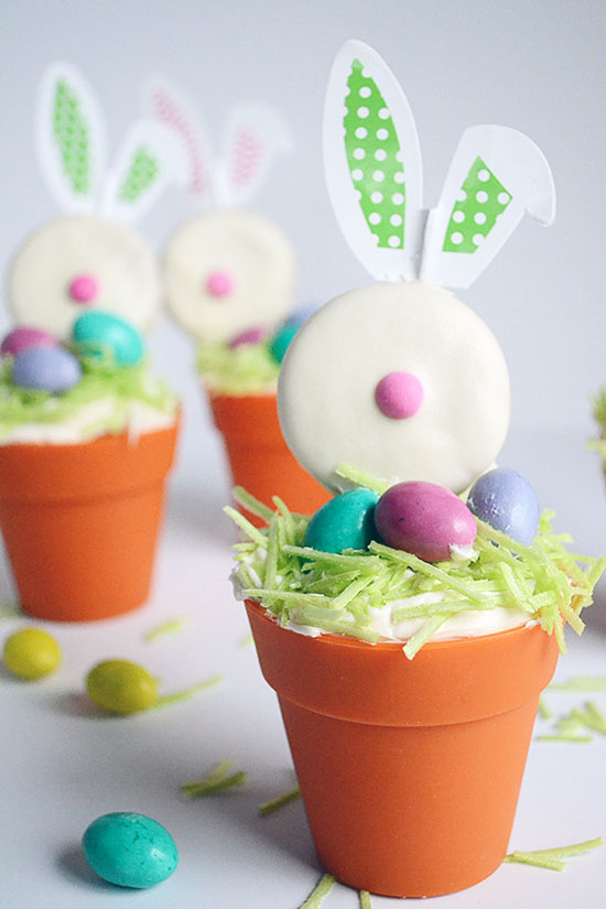 Make The Most Adorable Easter Bunny Cupcakes for Spring | Storypiece.net